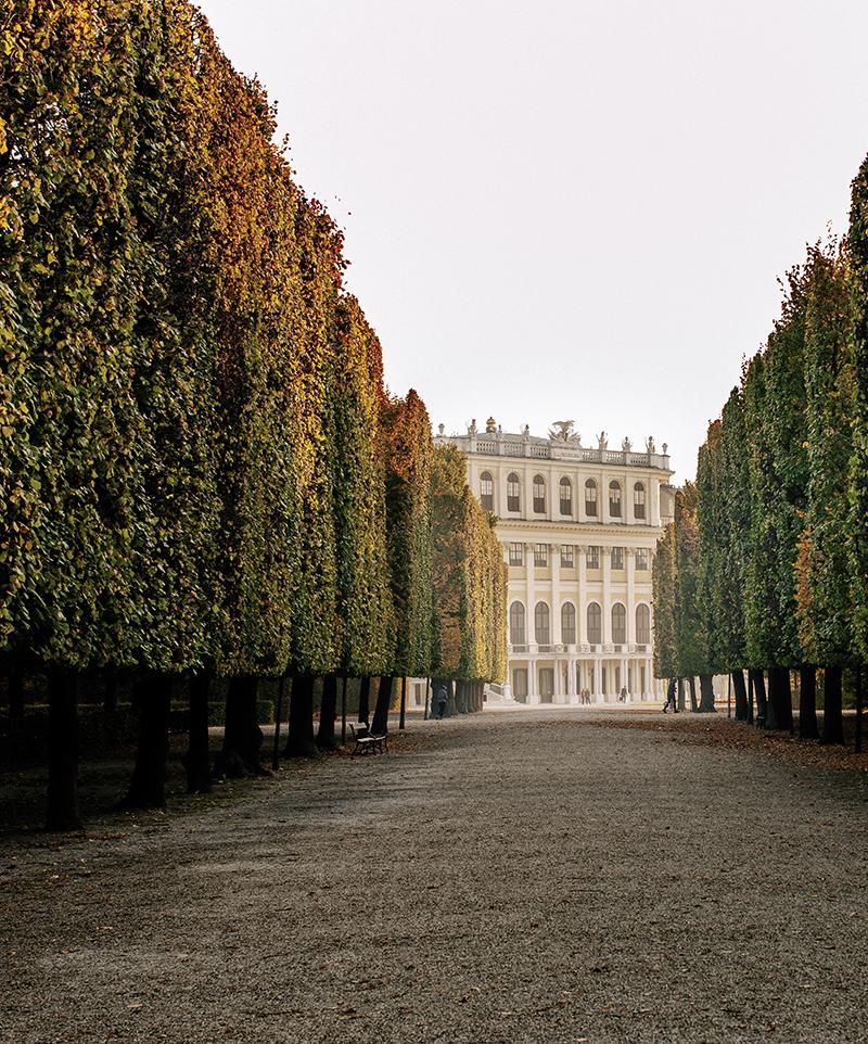 Blick auf Schloss Schönbrunn / Schoenbrunn Palace park